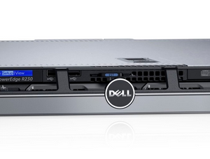 Dell PowerEdge R230 03